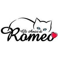 gli amici di romeo