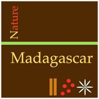 nature-madagascar